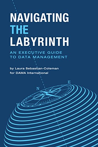 Navigating the Labyrinth: An Executive Guide to Data Management ()