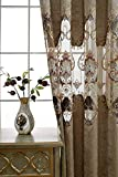 AiFish Chenille Curtains and Drapes for Bedroom Deluxe European Hollowed Cloth Curtains Embroidered Floral Half Blackout Draperies Curtains with Eyelets for Sliding Glass Door 1 Panel W52 x L63 inch For Sale