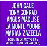 Inside the Dream Syndicate 1: Day of Niagara 1965
