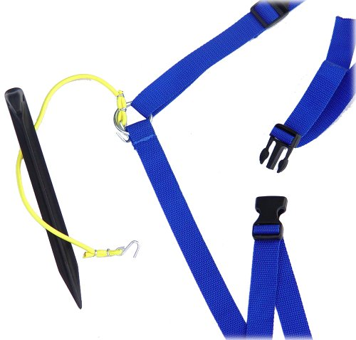 "Park & Sun Sports Adjustable Outdoor Volleyball Boundary Webbing with Ground Stakes: 1"" Wide Court Line Marker, Blue"