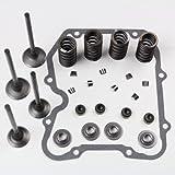 Niche Industries 1523 Polaris Sportsman 400 Cylinder Head Valve Spring Rebuild Kit 2001-2014