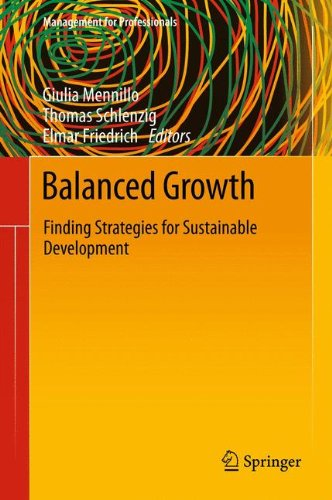 Balanced Growth: Finding Strategies for Sustainable Development (Management for Professionals)