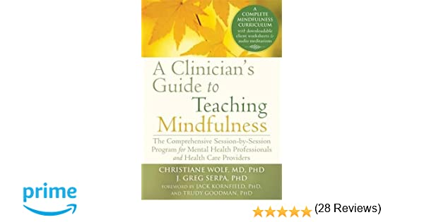 Amazon.com: A Clinician's Guide to Teaching Mindfulness: The ...