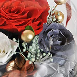 Eternal Rose- Preserved Flower Rose Handmade Fresh Flower Rose with Beautiful Creative Heart Design a Gift for Valentine's Day Mother's Day Christmas Anniversary Birthday Thanksgiving Girls(Red) 4