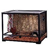 Oiibo Knock Down Glass Reptile Terrarium 24x18x18 Inch (Medium, Wide 24'' x 18'' x 18'')