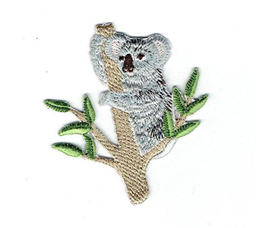 Koala Bear - Eucalyptus Branch - Iron on Applique Embroidered Patch