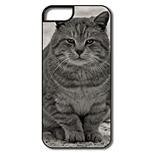 IPhone 5S Cases, Grey Cat White/black Cases For IPhone 5 5S by icecream design