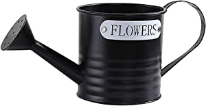 Hemoton Metal Watering Can Watering Pot Can Portable Flower Bucket Decorative for Plants Flower Garden Accessory 21 x 11 x 11cm (Black)