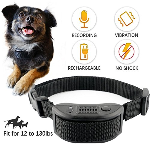 Best Buds Dog Bark Collar No Shock Collar for Small Medium Large Dogs Humane Rechargeable with Training Commands Recording Vibration Beep Sound Automatic Adjustable Electric Training Collar[Black] by Best Buds