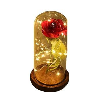 Amazon.com: Hip-top Flores Artificiales Silk Plástico Rosa ...