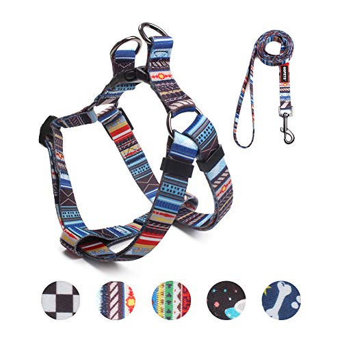 QQPETS Dog Harness Leash Set, Adjustable Heavy Duty No Pull Halter Harnesses for Extra Small Breed Dogs, Back Clip, Anti-Twist, Perfect for Walking (XS(12″-18″ Chest Girth), Splicing)