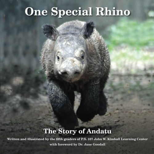 One Special Rhino: The Story of Andatu