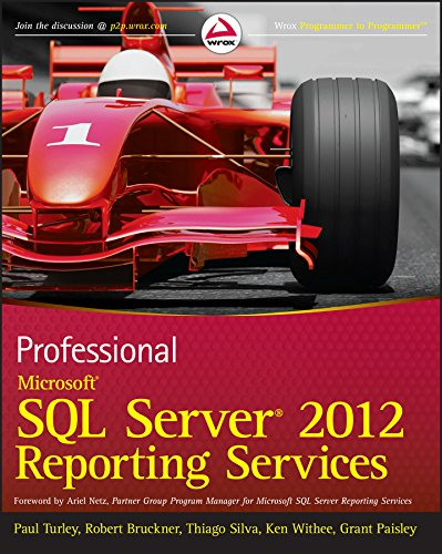 Professional Microsoft SQL Server 2012 Reporting Services (Best Database For Reporting)