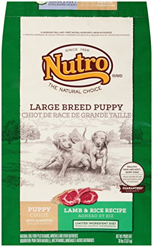 NUTRO NATURAL CHOICE Large Breed Puppy Lamb and Whole Brown Rice Formula Dog Food 30 Pounds