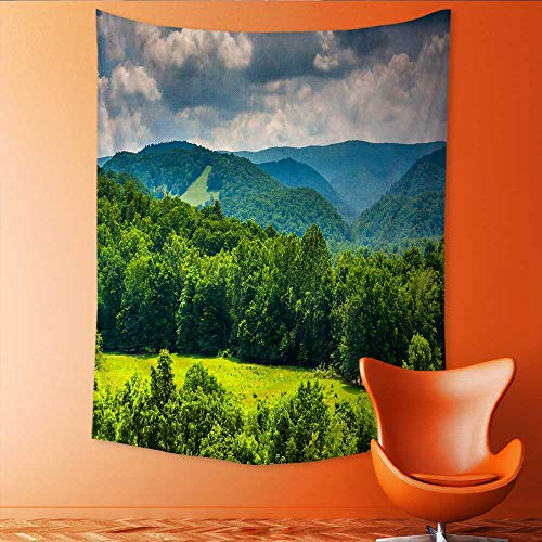- Auraisehome Vertical Version Tapestry View of Mountains in The Potomac Highlands of West Virginia Throw, Bed, Tapestry, or Yoga Blanket 40W x 60L INCH