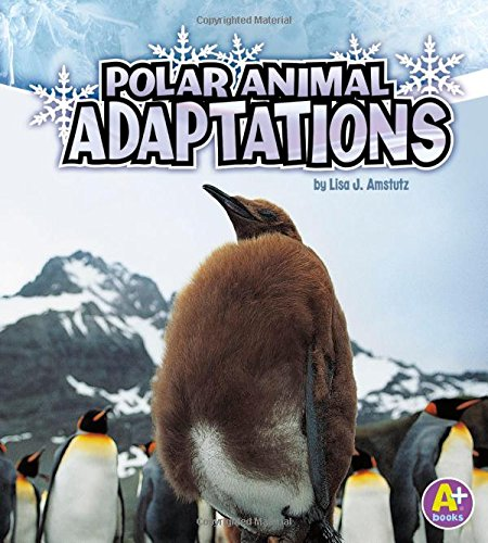 Polar Animal Adaptations (Amazing Animal Adaptations)
