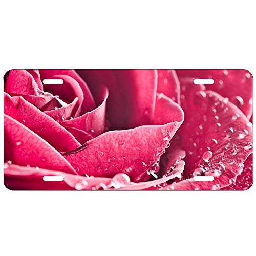 LIPLATE Auto License Plate Tin Sign Red Roses Drops Flowers Vintage Look for Bar, Pub, Restaurant, Coffee Shop, Bistro 6 x 12 Inches Size