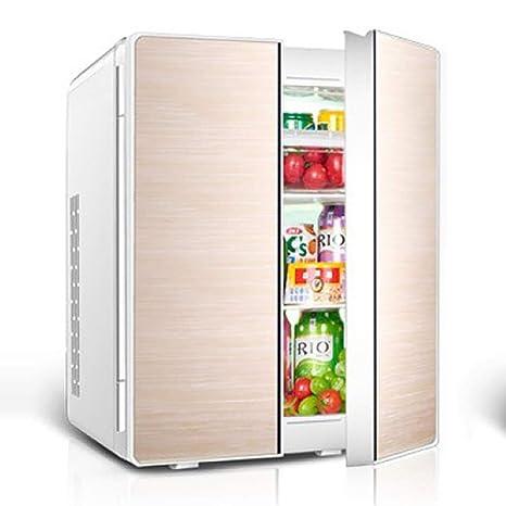 Kievy Doble Voltaje Refrigerador del Coche Portátil Refrigerador ...