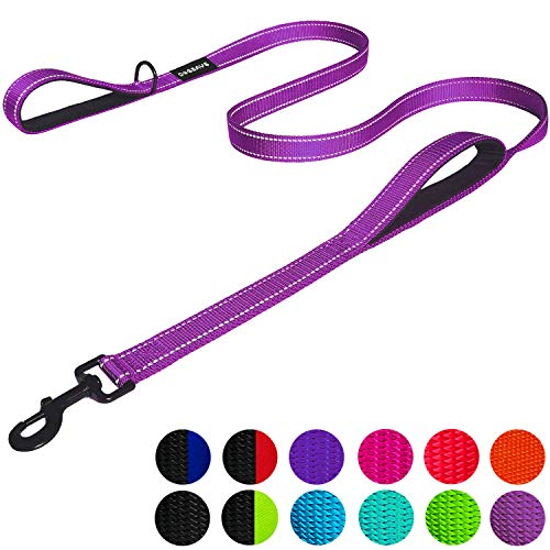 Dog Leash 6ft Long - Traffic Padded Two Handle - Heavy Duty - Double Handles Lead for Training Control - 2 Handle Leashes for Large Dogs or Medium Dogs - Reflective Pet Leash Dual Handle (Purple)
