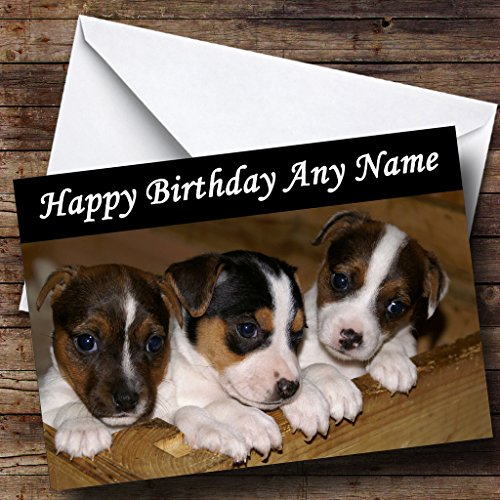 Jack Russell Puppy Dogs Personalized Birthday Greetings for sale  Delivered anywhere in USA