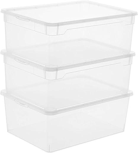 Rotho Clear, Juego de 3 cajas de almacenamiento de 10l con tapa, Plástico PP sin BPA, transparente, 3 x 10l 36.0 x 26.0 x 22.0 cm: Amazon.es: Hogar