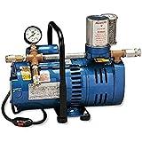 Allegro Industries 9821 Model A750 Ambient Air Pump, 3/4 hp Motor, 2-Worker
