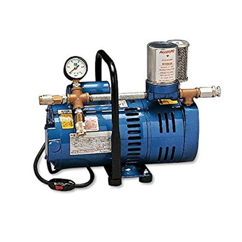 Allegro Industries 9821 Model A‐750 Ambient Air Pump, 3/4 hp Motor, 2-Worker