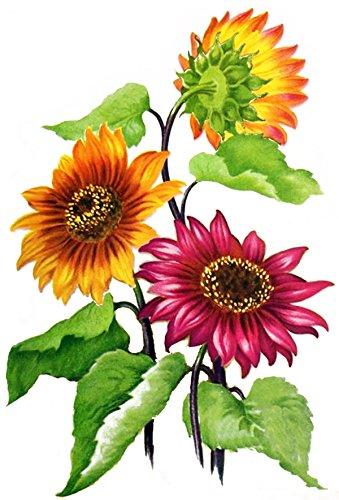 "Waterslide Decals (4pcs 2.5""x3.5""each) Sunflowers FLONZ 0686 Vintage Flowers"