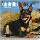 Australian Kelpies Calendar (Multilingual Edition)