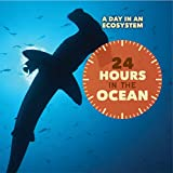 24 Hours in the Ocean (Day in an Ecosystem)