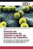 Síntesis de adsorbentes de metales a partir de plátano de Colombia: Encaminados a la modificación molecular de adsorbentes de origen vegetal con el ... una mejor eficiencia (Spanish Edition)