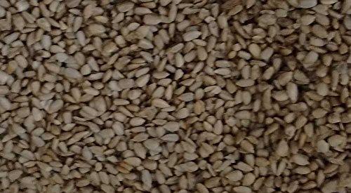 Sprouted Organic Raw Sea Salt Crispy Romanian Sunflower Seeds 2 lb (Sprouted Sunflower Seeds Organic)