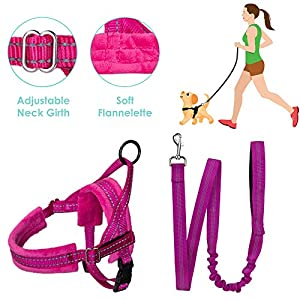 SlowTon No Pull Small Dog Harness and Leash, Heavy Duty Easy Walk Vest Harness Soft Padded Reflective Adjustable Puppy Harness Anti-Twist 4FT Pet Lead Quick Fit Lightweight for Small Dog Cat Animal