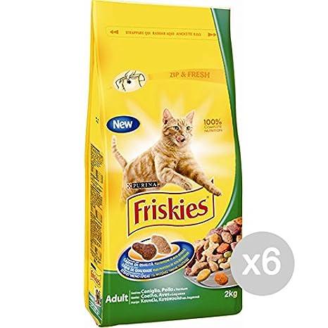 Friskies Juego 6 Gato Croccantini kg 2 conig Pollo Verd. Comida para Gatos: Amazon.es: Productos para mascotas