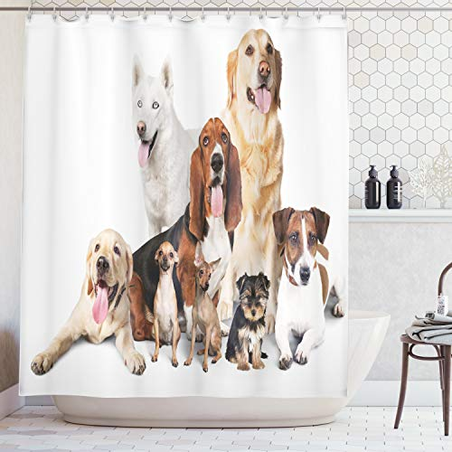 Ambesonne Dog Lover Decor Collection, Group Of Dogs Posing For Photo Shoot Portrait Togetherness Companionship , Polyester Fabric Bathroom Shower Curtain Set, 75 Inches Long, Brown Beige