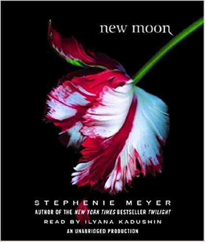 Ebook download free for ipad manifesting with the moon tap into.