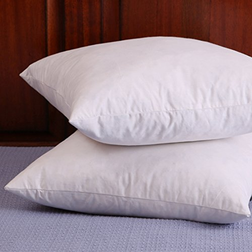 Check expert advices for filled throw pillows for couch?