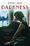 Into the Darkness: A Novel (The Storms of War)