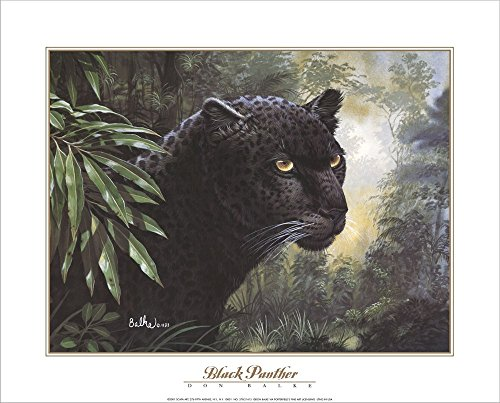 - Black Panther by Don Balke Laminated Art Print, 20 x 16 inches