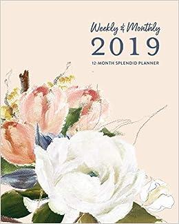 Amazon.com: Weekly & Monthly 2019 12-Month Splendid Planner ...