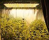 BESTVA CE Series 1000W LED Grow Light with SANAN
