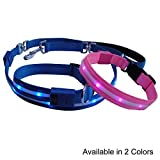 NIGHT BRIGHT LED DOG LEASH & COLLAR COMBO PACK (Bright Blue) WITH 3 FLASHING MODES