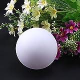 AGPTEK Flashing LED Ball Light, Warm White Floating