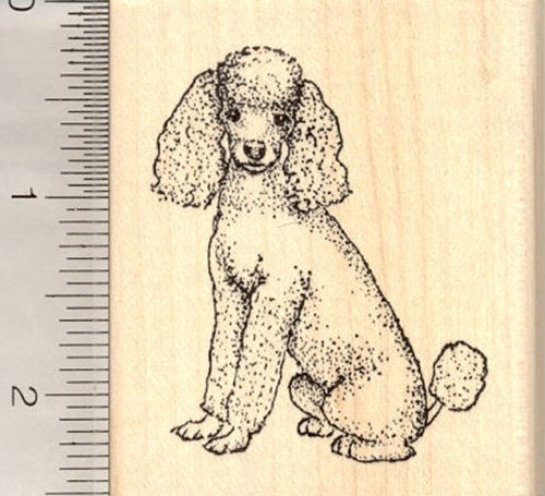 Poodle Sitting, Dog Rubber Stamp