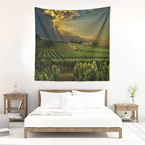 Winery Square Tapestry Wall Hanging Sunset Over The Vineyards of The South of France Sunbeams Cloudscape Picture Tapestry for Home Decor 63W x 63L INCH Green Yellow Gray