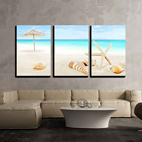 wall26 - 3 Piece Canvas Wall Art - Scenery of Tropical/Summer Resort. White Beach with Starfish and Seashells - Modern Home Decor Stretched and Framed Ready to Hang - 24