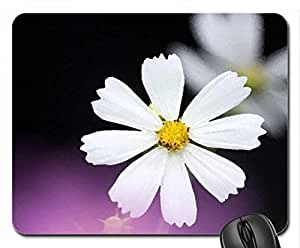 Little white Cosmos Mouse Pad, Mousepad (Flowers Mouse Pad, 10.2 x 8.3 x 0.12 inches)