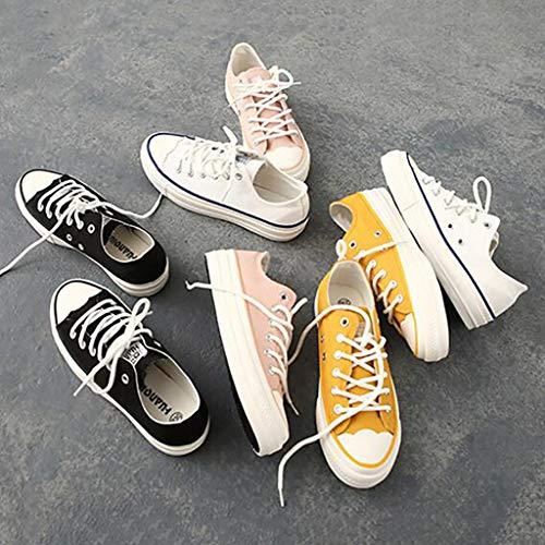 Étudiantes Chaussures Toile Primavera Polyvalentes D Taille couleur Coréennes Nouvelles De Basses D Ewet 39 xqCfEnw8pC