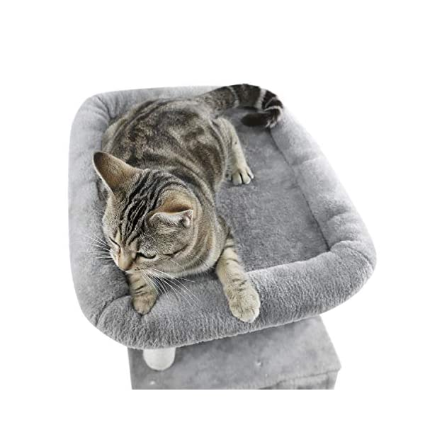 PAWZ Road Cat Tree Luxury Cat Tower with Double Condos, Spacious Perch, Fully Wrapped Scratching Sisal Posts and Replaceable Dangling Balls 3