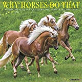 Why Horses Do That 2020 Calendar